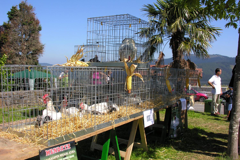 Feria avícola de Mendata